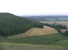 2005 Roundway Down_11