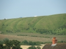 2005 Roundway Down_17