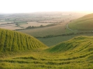 2005 Roundway Down_7
